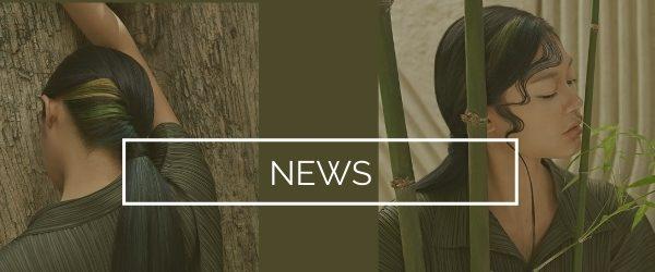 blog-hair-news