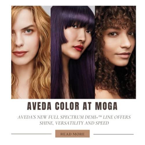 demi-aveda-color-shine-hair