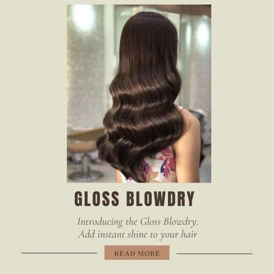 gloss-blowdry-shiny-hair